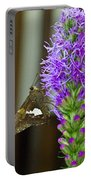 Liatris And Skipper Portable Battery Charger