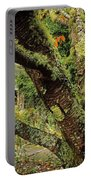 Lichen Covered Apple Tree, Walled Portable Battery Charger