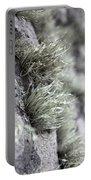 Lichen Niebla Podetiaforma Portable Battery Charger