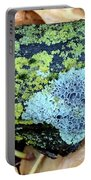 Lichen On Fallen Branch Portable Battery Charger