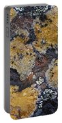 Lichen Pattern Series - 10 Portable Battery Charger