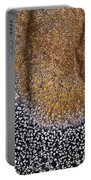 Lichen Pattern Series - 11 Portable Battery Charger