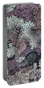 Lichen Pattern Series - 57 Portable Battery Charger
