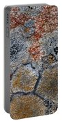 Lichen Pattern Series - 6 Portable Battery Charger