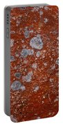 Lichen Pattern Series - 9 Portable Battery Charger