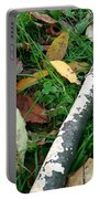 Lichen Recycling Portable Battery Charger