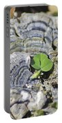 Lichen The Shamrock Portable Battery Charger