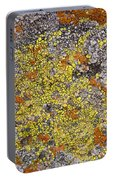 Lichens Portable Battery Charger