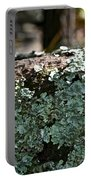Lichens Lace Portable Battery Charger
