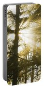 Light Beams Shining Through Trees And Fog Portable Battery Charger