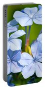 Light Blue Plumbago Flowers Portable Battery Charger by Carol Groenen