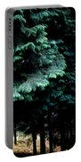 Light Forest Portable Battery Charger