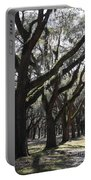 Light Through Live Oaks Portable Battery Charger
