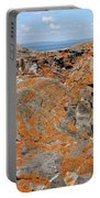 Likin' The Lichen Portable Battery Charger
