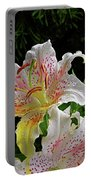 Lilies In The Rain Portable Battery Charger
