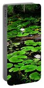 Lily Pad Turtle Camo Portable Battery Charger