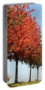 Line Of Autumn Trees Portable Battery Charger