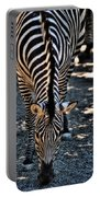 Lines             Zebra Portable Battery Charger