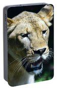 Lion - Endangered Species - Wildlife Portable Battery Charger