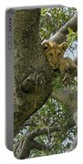 Lion Lookout Portable Battery Charger