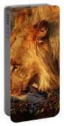 Lion's Pride Portable Battery Charger