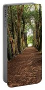 Lismore, County Waterford, Ireland Portable Battery Charger