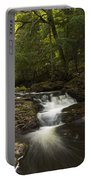 Little Carp River Falls 3 Portable Battery Charger