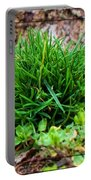 Little Grass Mound Portable Battery Charger