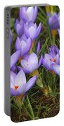 Little Purple Crocuses Portable Battery Charger