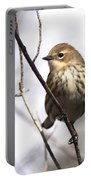 Little Speckled Bird Portable Battery Charger