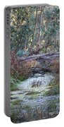 Little Swampy Creek Portable Battery Charger