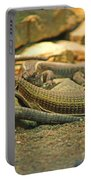 Lizards Portable Battery Charger