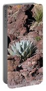 Lone Agave Portable Battery Charger