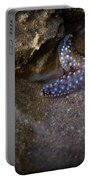Lone Seastar Portable Battery Charger