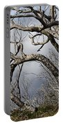Lone Tree Portable Battery Charger