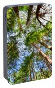 Look To The Sky Portable Battery Charger