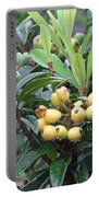 Loquats In The Rain Portable Battery Charger