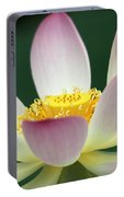 Lotus Diva Portable Battery Charger