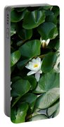 Lotus Portable Battery Charger