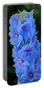 Lovely Larkspur Blue Portable Battery Charger