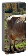 Low Cow Portable Battery Charger