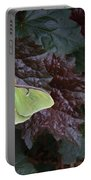 Luna Moth 1 Portable Battery Charger