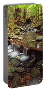 Lupin Creek, Strathcona Provincial Portable Battery Charger