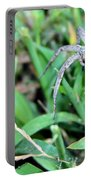 Lurking Spider In The Grass Portable Battery Charger
