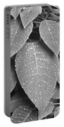 Lush Leaves And Water Drops 2 Bw Portable Battery Charger