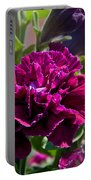 Maco Petunia Flower Double Burgundy Madness Art Prints Portable Battery Charger