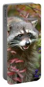 Mad Raccoon Portable Battery Charger