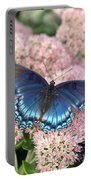 Madam Blue Portable Battery Charger