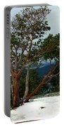 Madrone On Young Hill Portable Battery Charger