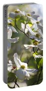Magical White Flowering Dogwood Blossoms Portable Battery Charger